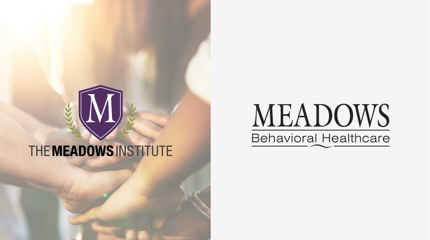 The Meadows Institute Announcement